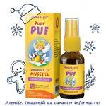 Pufy Puf Propolis si Musetel Spray 20 ml Ingerasul Dacia Plant, image 1