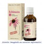 Tinctura de Echinacea Fara Alcool 50 ml Dacia Plant, image