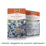 Ceai de Scai Vanat 50 g Stef Mar, image