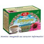 Ceai Echinacea 20 plicuri Fares, image