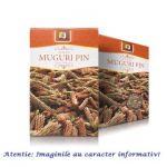 Ceai de Muguri de Pin 50 g Stef Mar, image 1