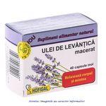 Ulei de Levantica 40 capsule Hofigal, image 1