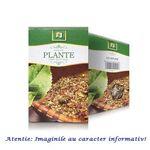 Ceai de Os Iepure 50 g Stef Mar, image