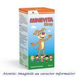 Sirop Minevita 200 ml Sun Wave Pharma, image