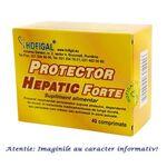 Protector Hepatic Forte 40 comprimate Hofigal, image