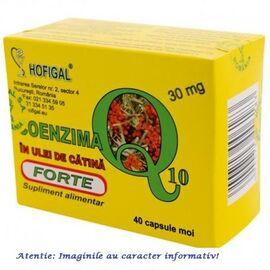Coenzima Q10 in Ulei de Catina Forte 30 mg 40 capsule Hofigal, image