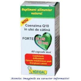 Coenzima Q10 in Ulei de Catina Forte Plus 60 mg 40 capsule Hofigal, image