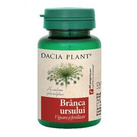 Branca Ursului 60 comprimate Dacia Plant, image
