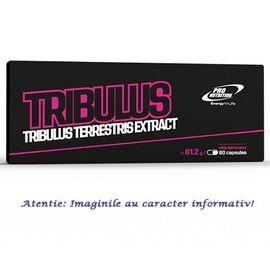 Tribulus Extract din Fructe de Tribulus Terrestris 60 capsule Pro Nutrition, image