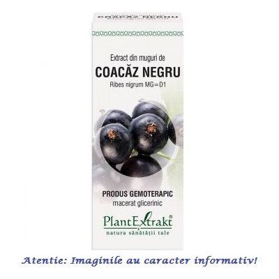 Extract din Muguri de Coacaz Negru 50 ml PlantExtrakt, image 1