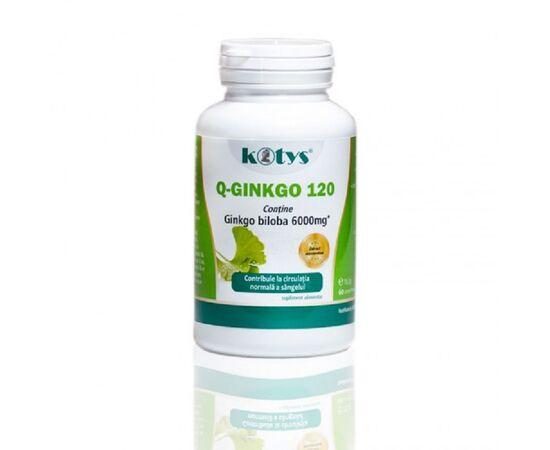 Q Ginkgo 120 mg 60 capsule Kotys, image
